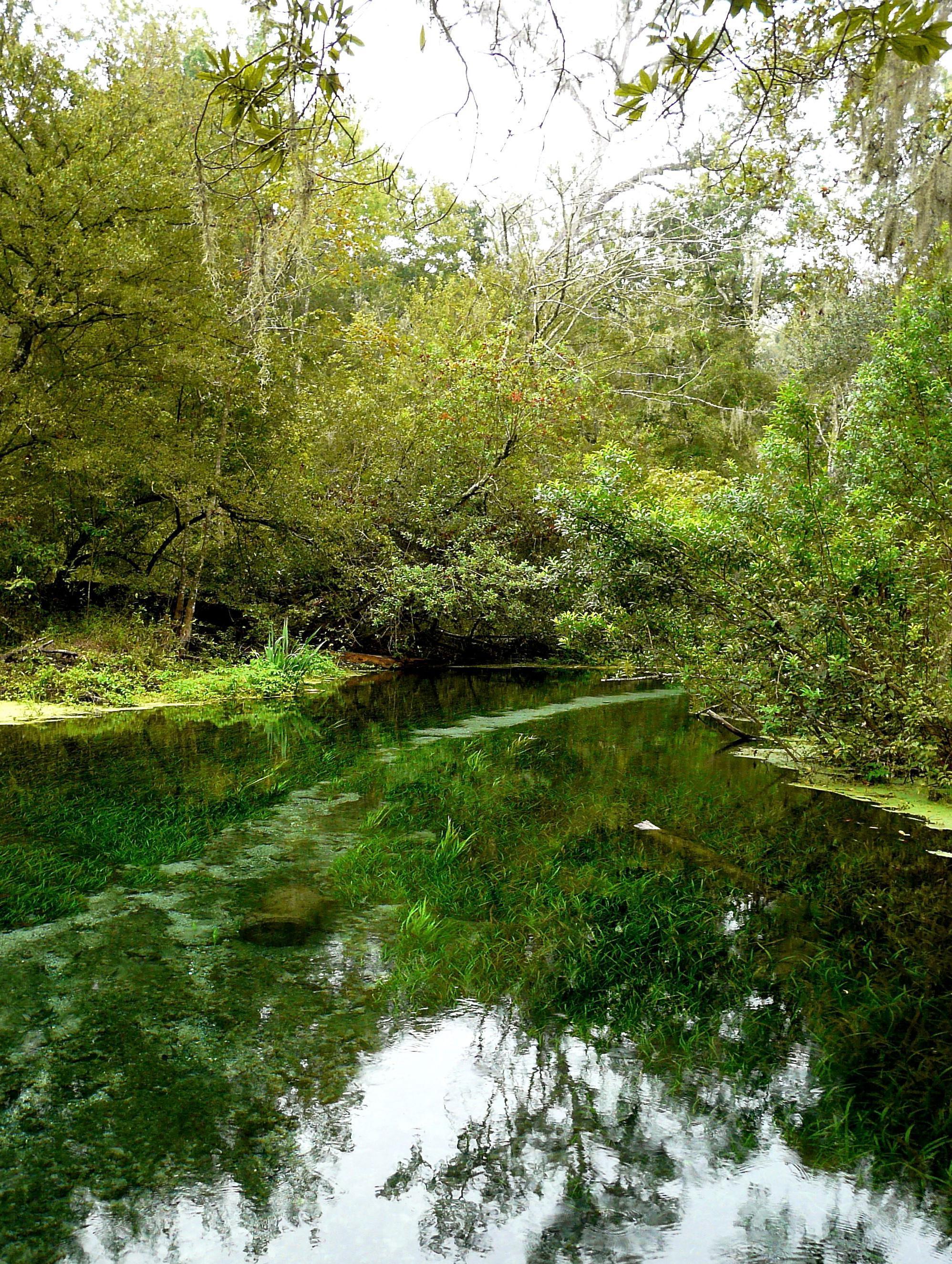 5 test river